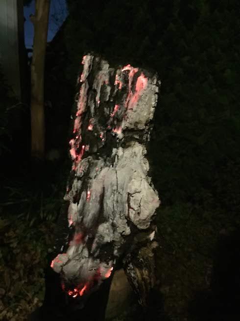 その辺に落ちてた薪。