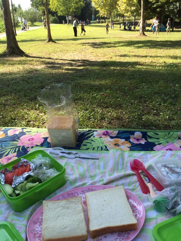 去年使ったこのレジャーシート。ピクニックにレジャーシートは必需品。