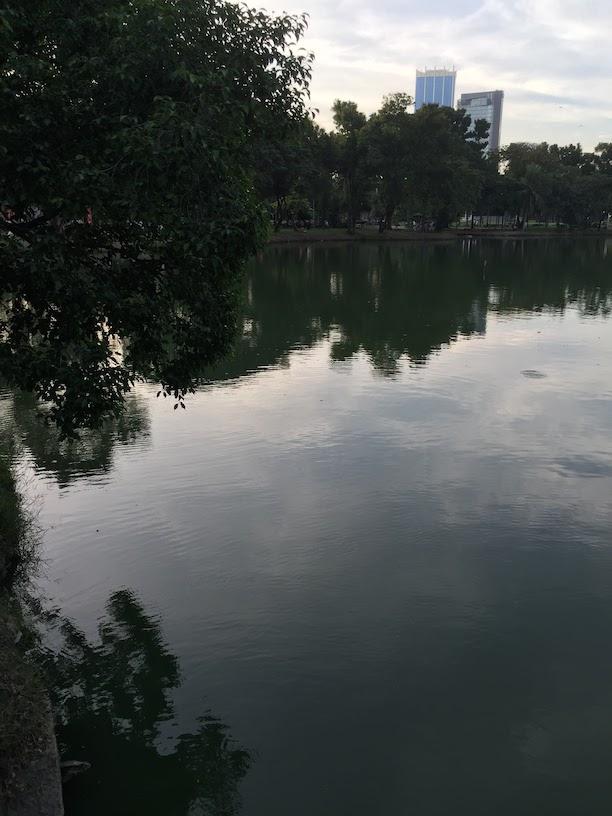 タイの公園。左下に何か映っているのがわかりますでしょうか?
