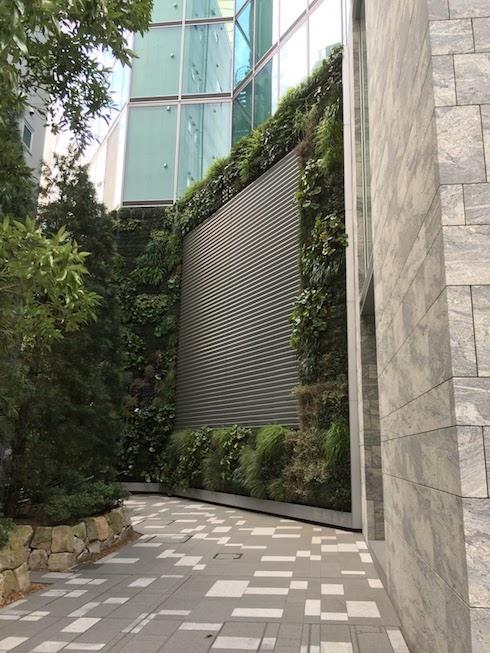 突然現れた緑の壁面緑化された壁。ふらふらと吸い寄せられる様に進んで行くと・・・