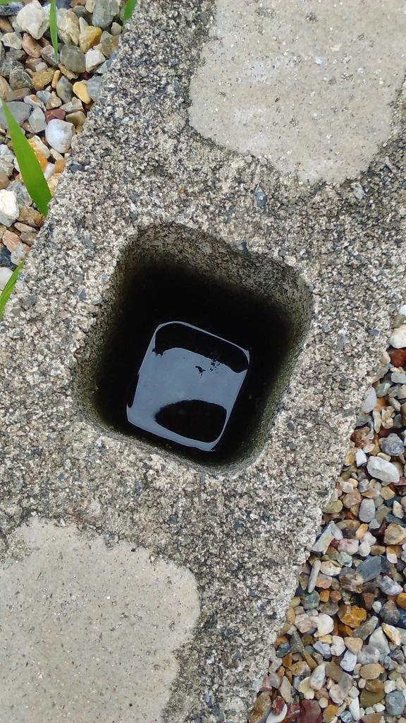 穴には水が溜まって・・・