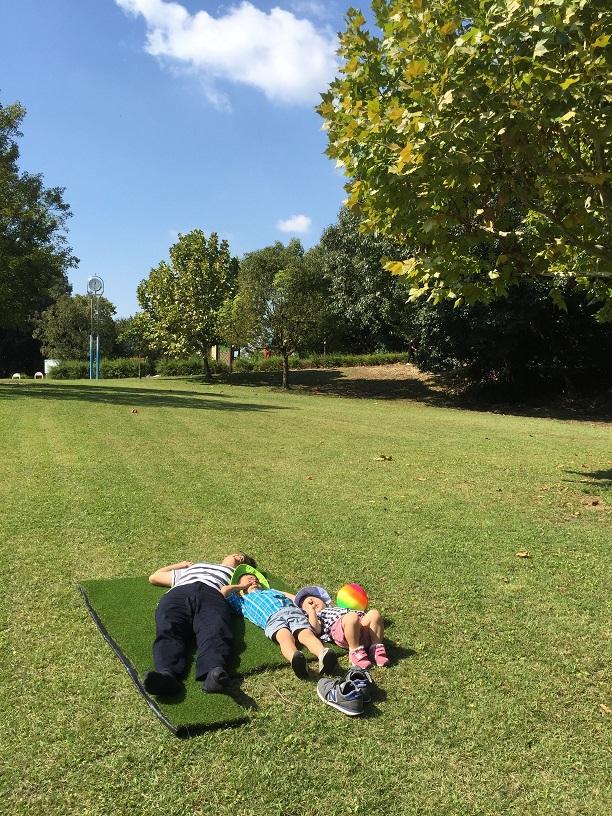 公園の芝生の上で寝転ぶ柴ちゃんとチビ達。