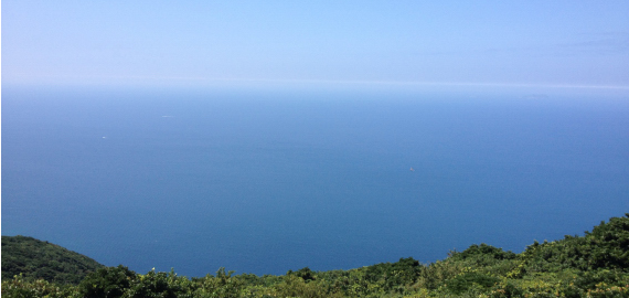 番岳から望む景色です。