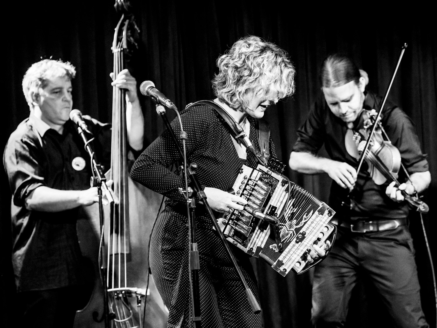 32. LIVE JAZZ Bad Hersfeld - Zydeco Annie & Swamp Cats