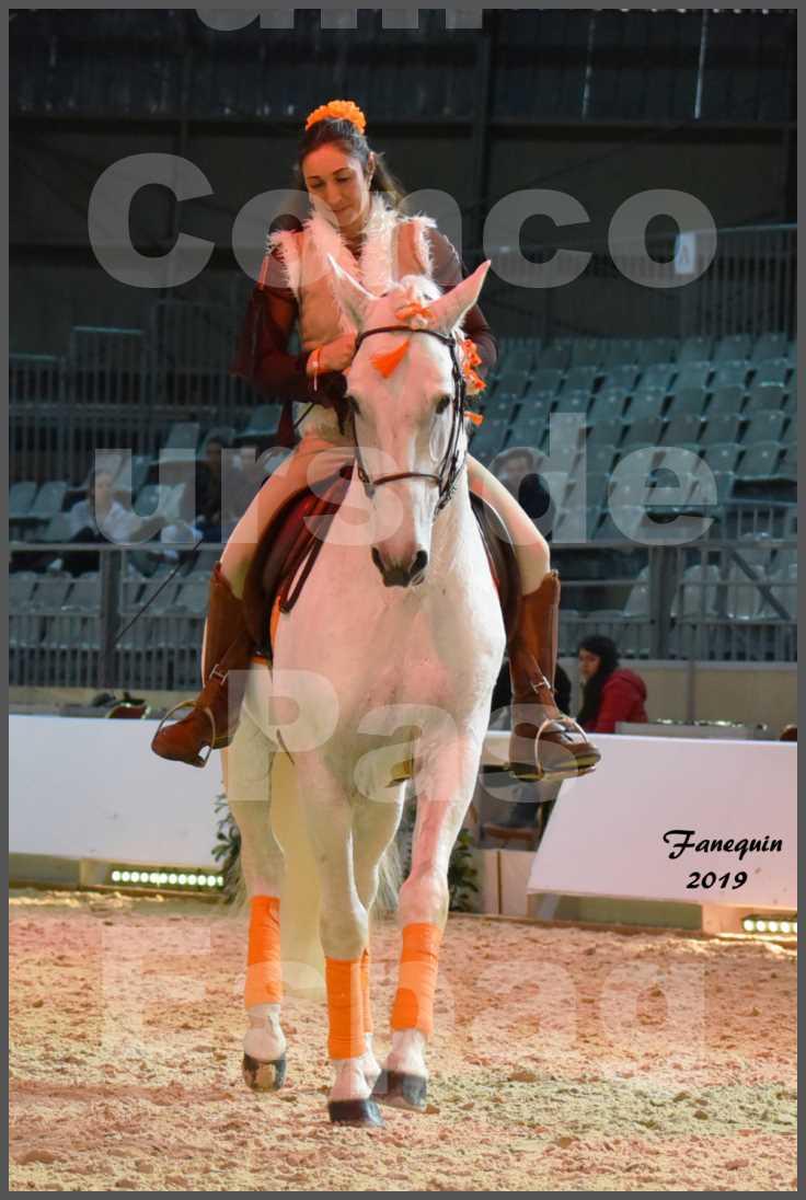 """Cheval Passion 2019 - Concours de Pas Espagnol - Étalon """"ZIDANE"""" - 24"""