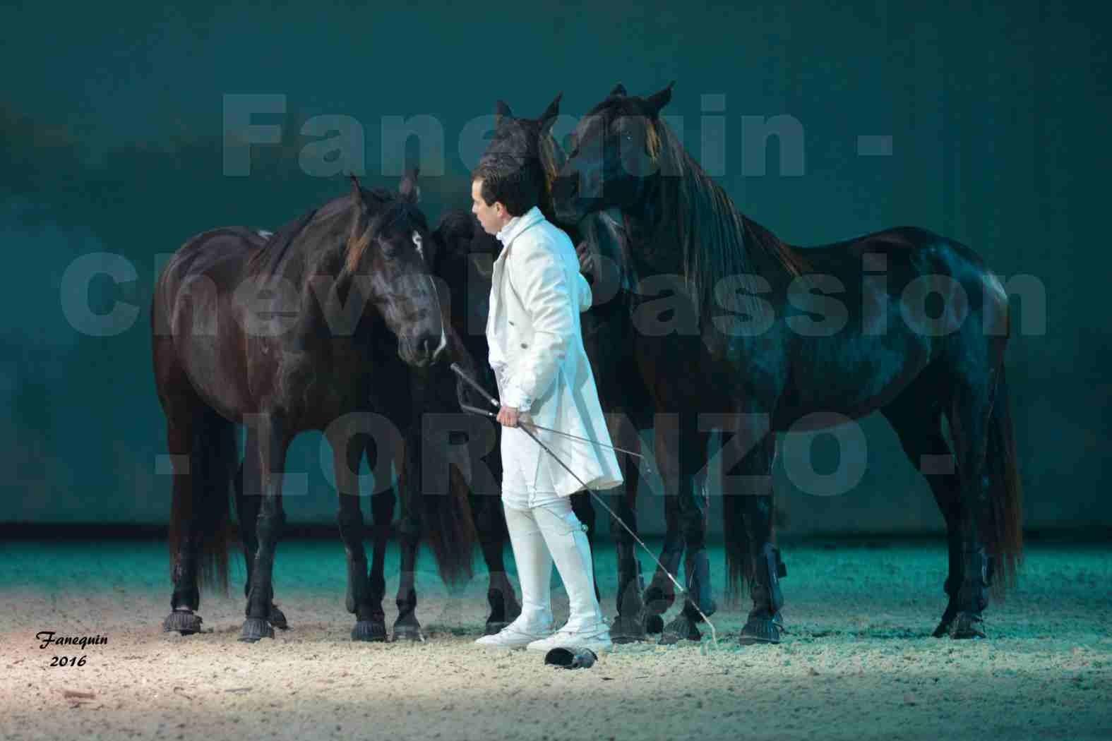 """Cheval Passion 2016 - Spectacle les Crinières d'OR - LORENZO """"Blanc"""" - représentation du 20 janvier 2016 - 11"""