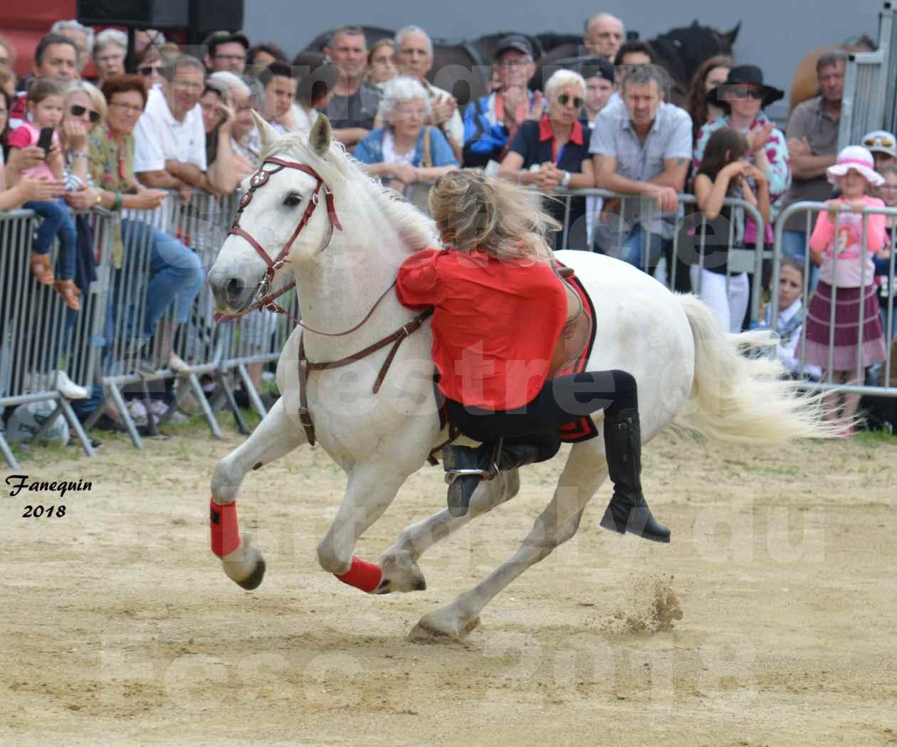 Spectacle Équestre le 3 juin 2018 à Saint Gély du Fesc - Voltige équestre - Troupe de Jean Antoine FIRMIN - 28