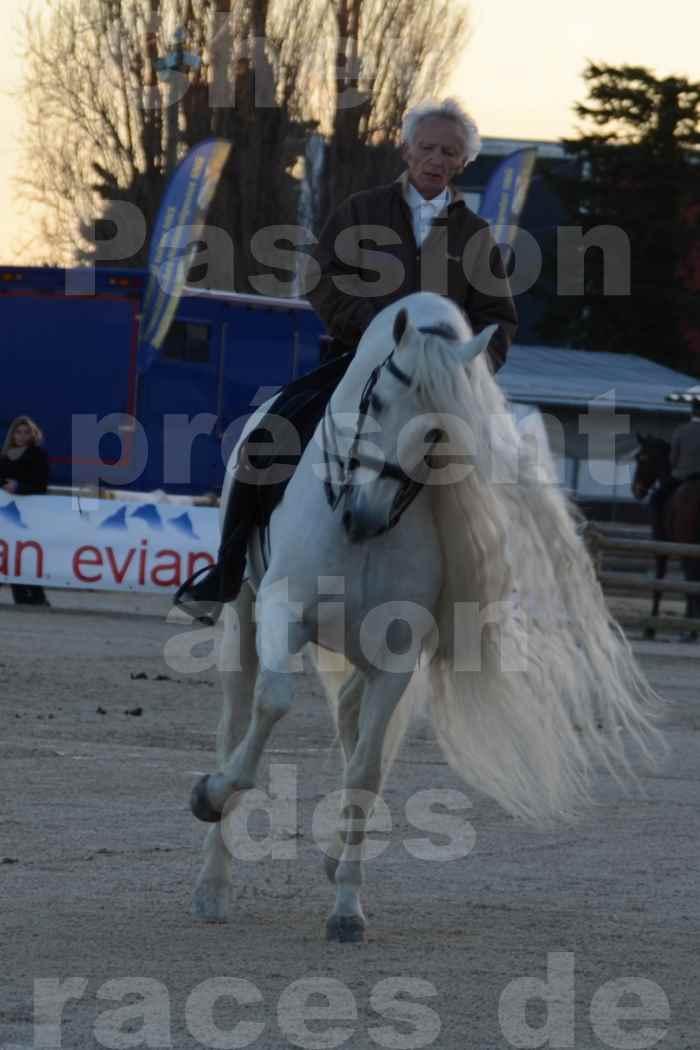 """Cheval Passion 2014 - Etalon """"GALAN""""  blanc écurie Alain LAUZIER - Notre Sélection - 39"""