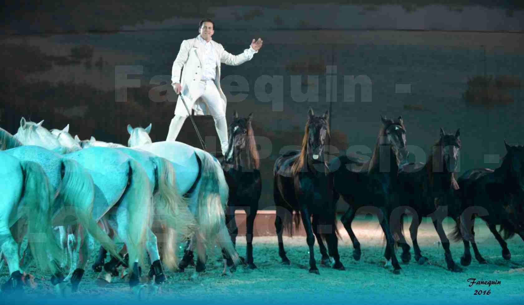 """Cheval Passion 2016 - Spectacle les Crinières d'OR - LORENZO """"Blanc"""" - représentation du 20 janvier 2016 - 26"""