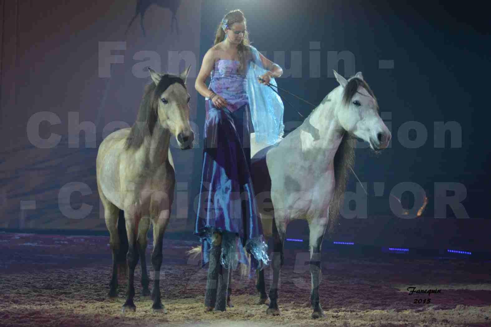Cheval Passion 2015 - Spectacle des Crinières d'OR - Lucie VAUTHIER & 2 chevaux en liberté - 13