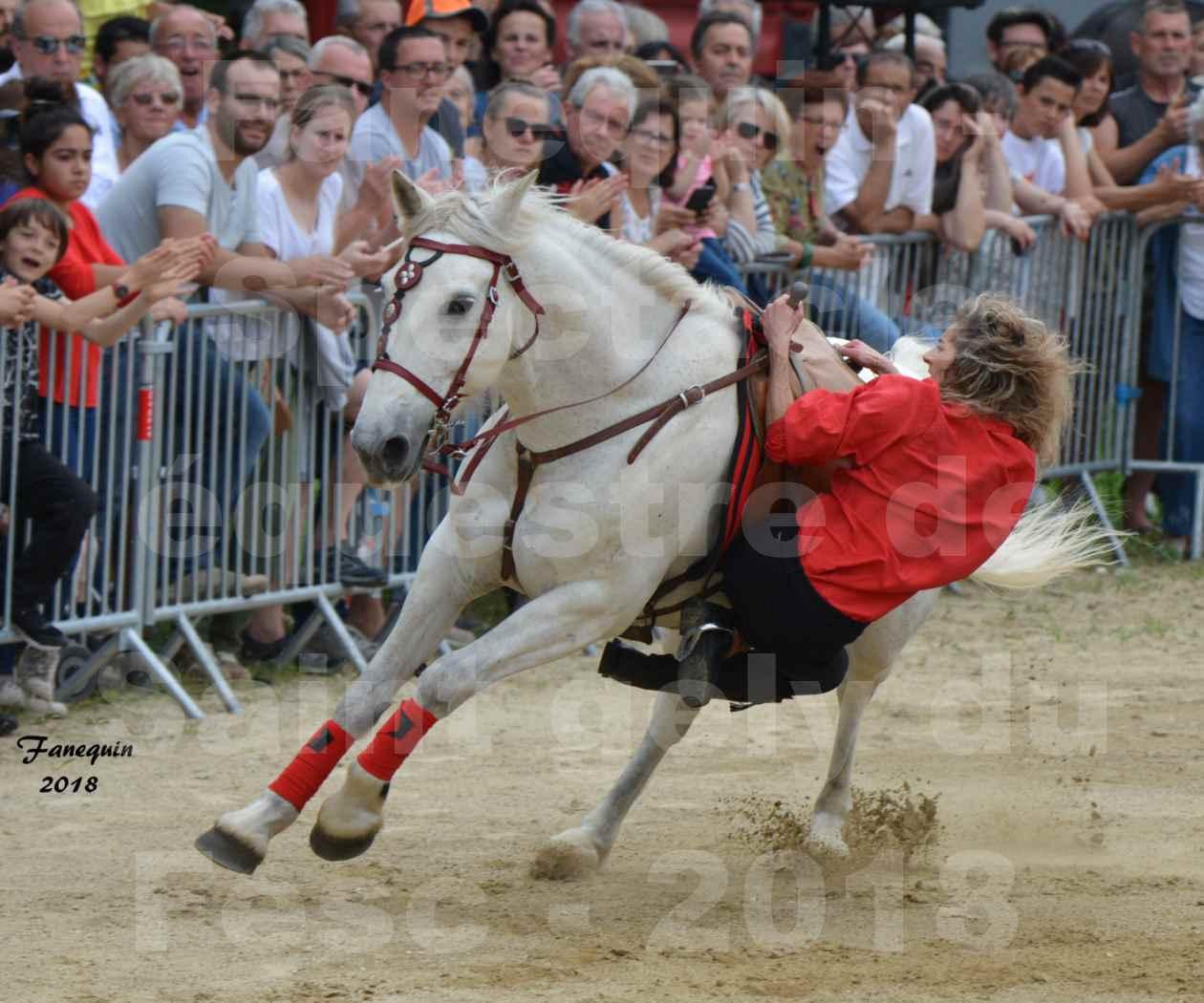 Spectacle Équestre le 3 juin 2018 à Saint Gély du Fesc - Voltige équestre - Troupe de Jean Antoine FIRMIN - 46