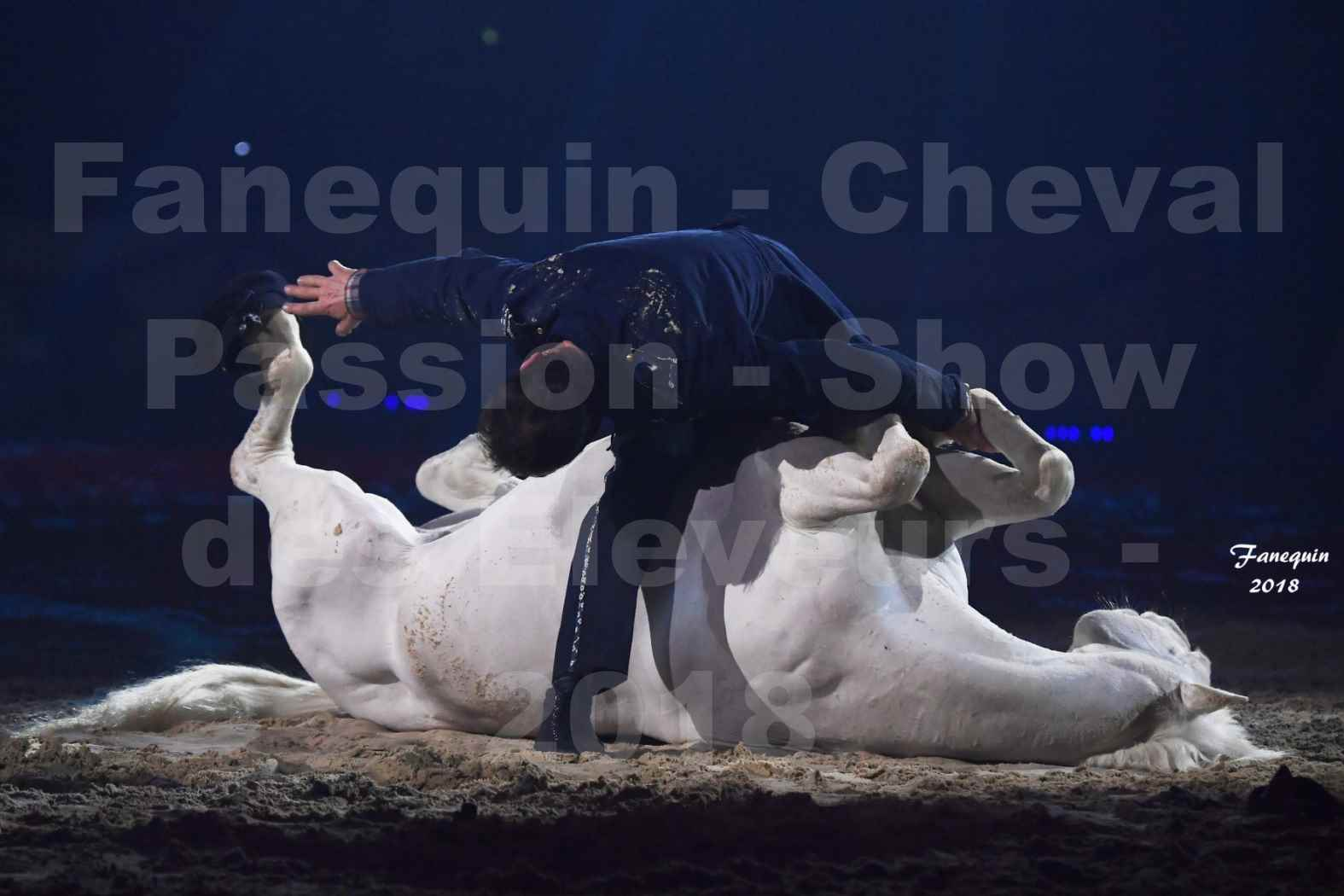 Cheval Passion 2018 - Spectacle les Crinières d'OR - Le FACTEUR 3 - 10