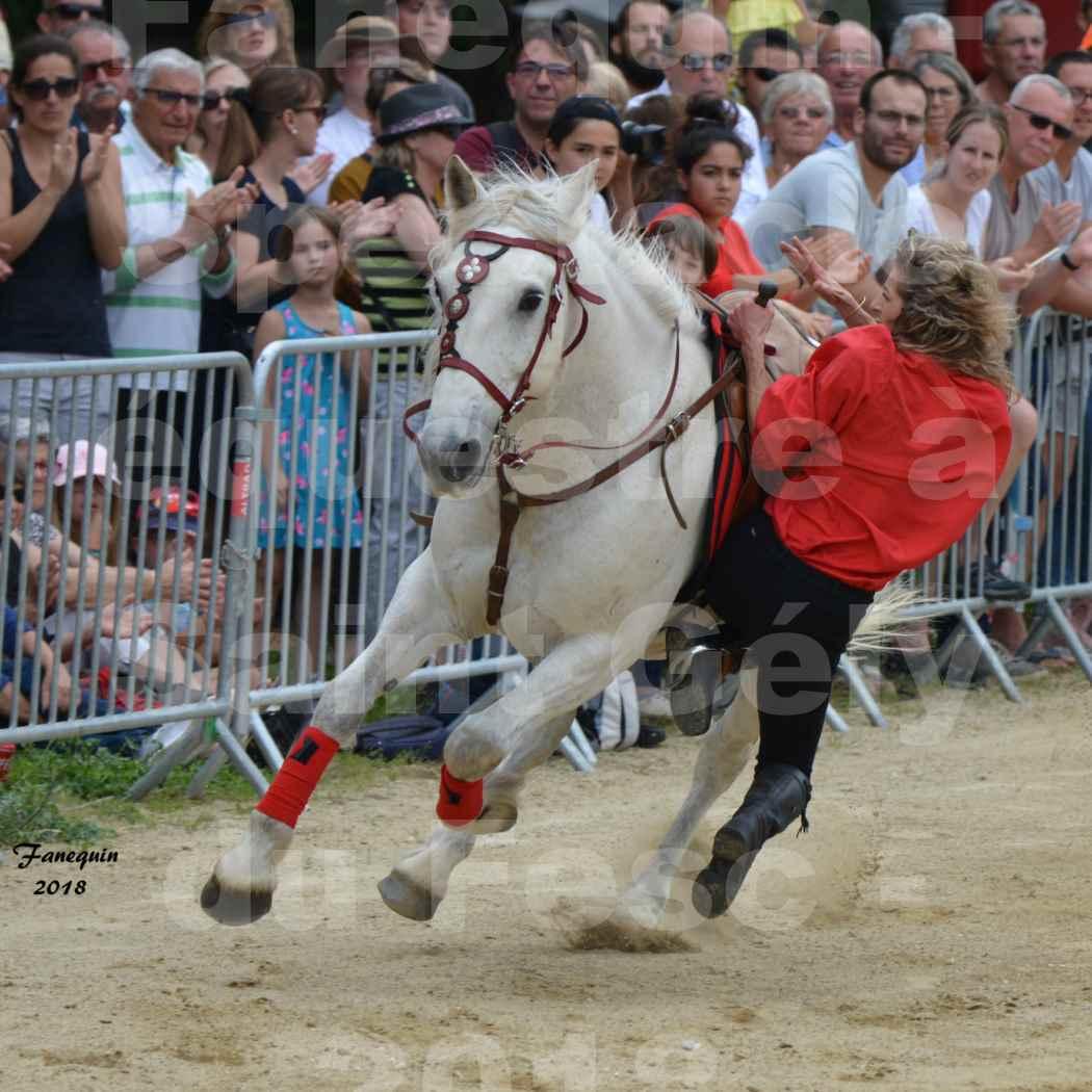 Spectacle Équestre le 3 juin 2018 à Saint Gély du Fesc - Voltige équestre - Troupe de Jean Antoine FIRMIN - 47