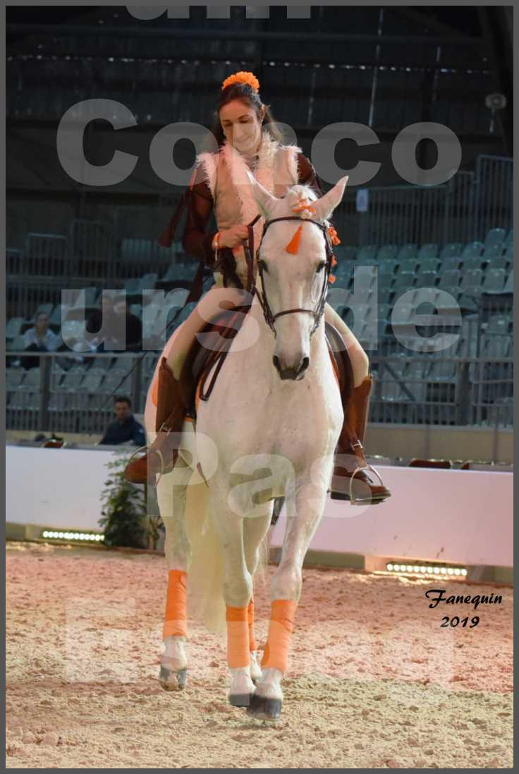 """Cheval Passion 2019 - Concours de Pas Espagnol - Étalon """"ZIDANE"""" - 26"""