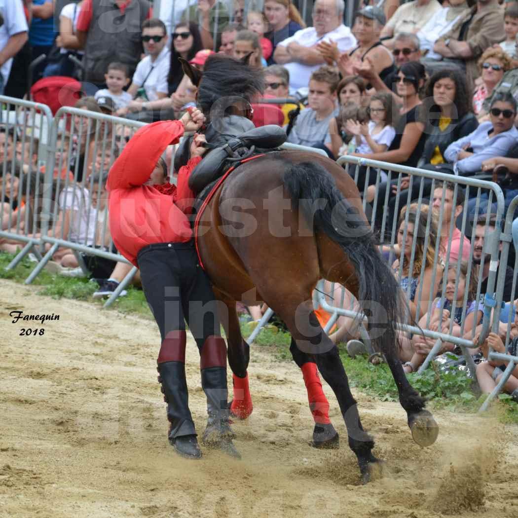 Spectacle Équestre le 3 juin 2018 à Saint Gély du Fesc - Voltige équestre - Troupe de Jean Antoine FIRMIN - 33