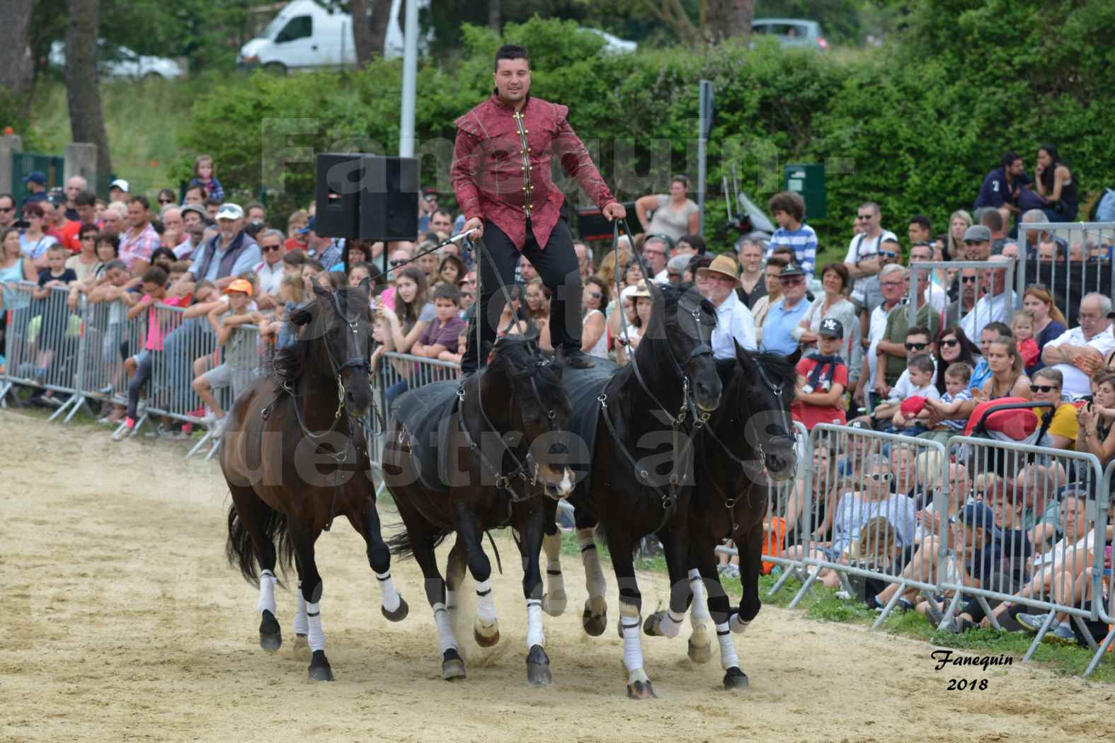 Spectacle Équestre le 3 juin 2018 à Saint Gély du Fesc - Poste Hongroise de 2 à 6 chevaux - Benoît SOUMILLE - 04