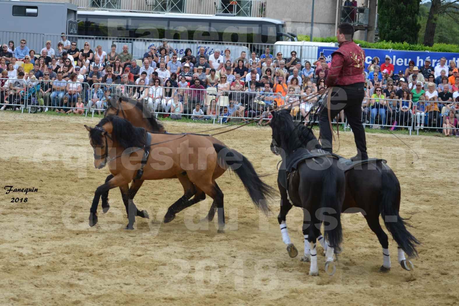 Spectacle Équestre le 3 juin 2018 à Saint Gély du Fesc - Poste Hongroise de 2 à 6 chevaux - Benoît SOUMILLE - 13
