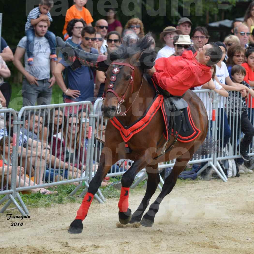 Spectacle Équestre le 3 juin 2018 à Saint Gély du Fesc - Voltige équestre - Troupe de Jean Antoine FIRMIN - 15