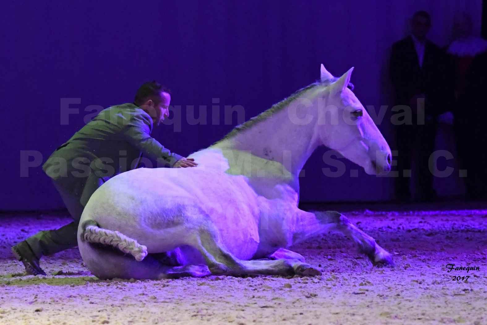 Cheval Passion 2017 - M. I. S. E. C. - Ludovic LONGO & 1 cheval en liberté - 19