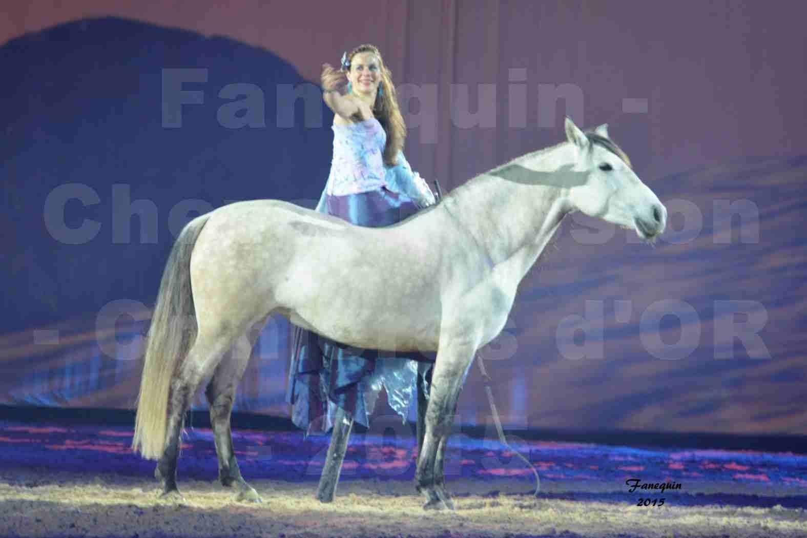 Cheval Passion 2015 - Spectacle des Crinières d'OR - Lucie VAUTHIER & 2 chevaux en liberté - 05