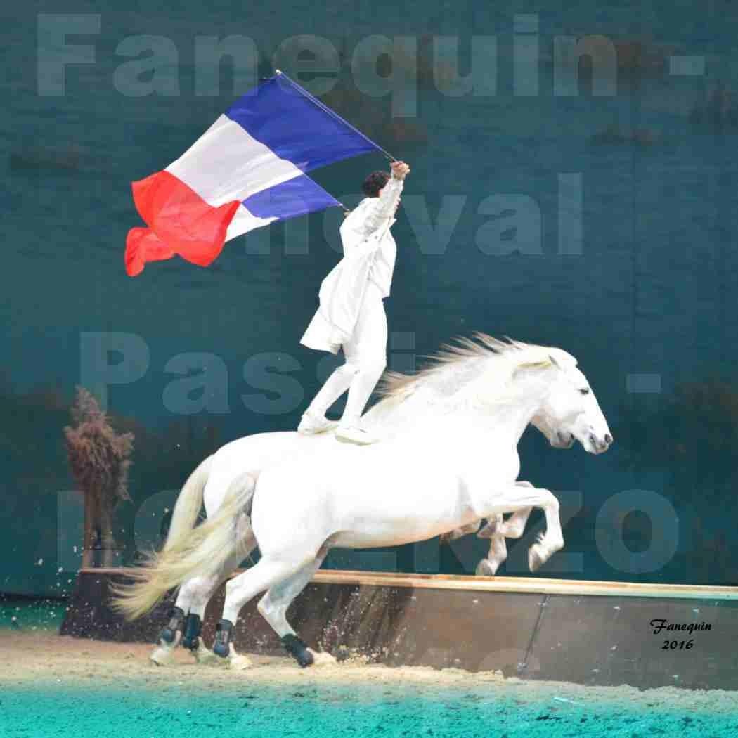 """Cheval Passion 2016 - Spectacle les Crinières d'OR - LORENZO """"Blanc"""" - représentation du 23 janvier 2016 - 03"""