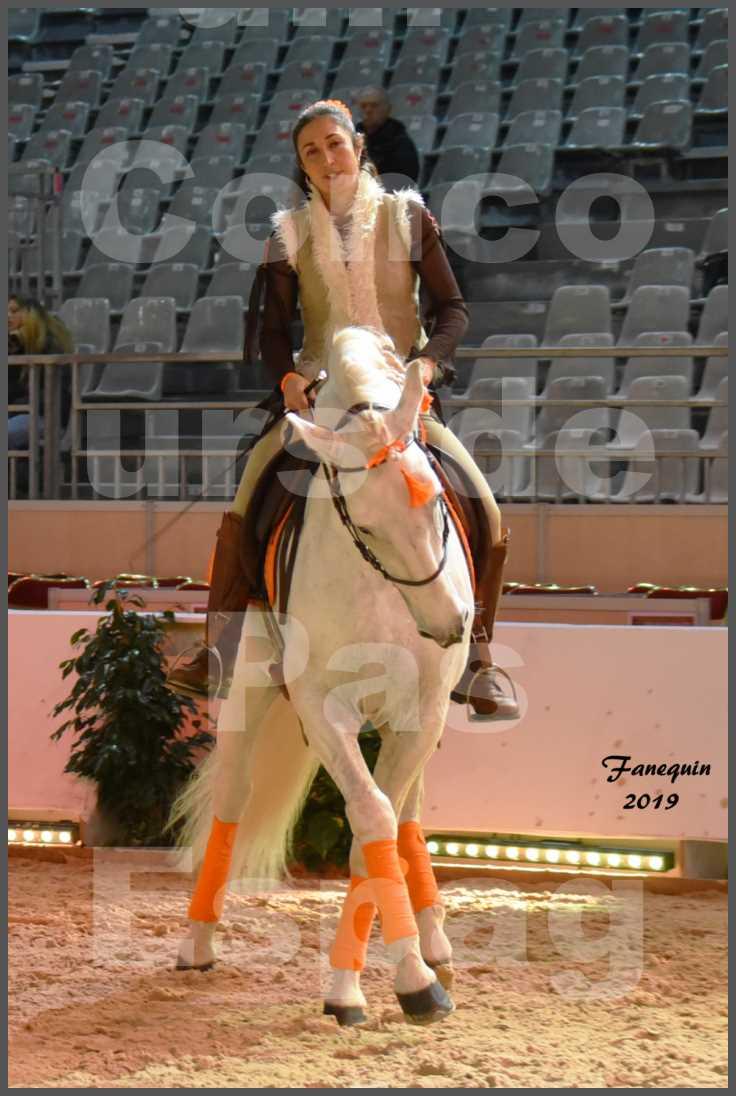 """Cheval Passion 2019 - Concours de Pas Espagnol - Étalon """"ZIDANE"""" - 09"""