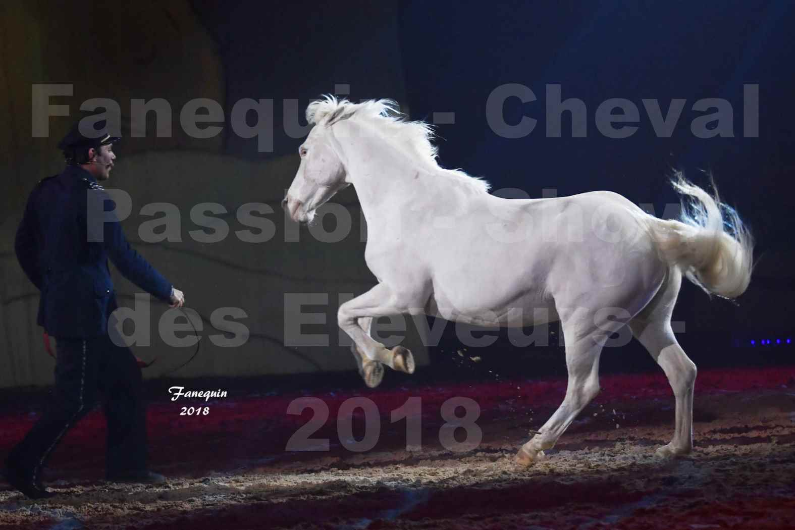 Cheval Passion 2018 - Spectacle les Crinières d'OR - Le FACTEUR 3 - 04