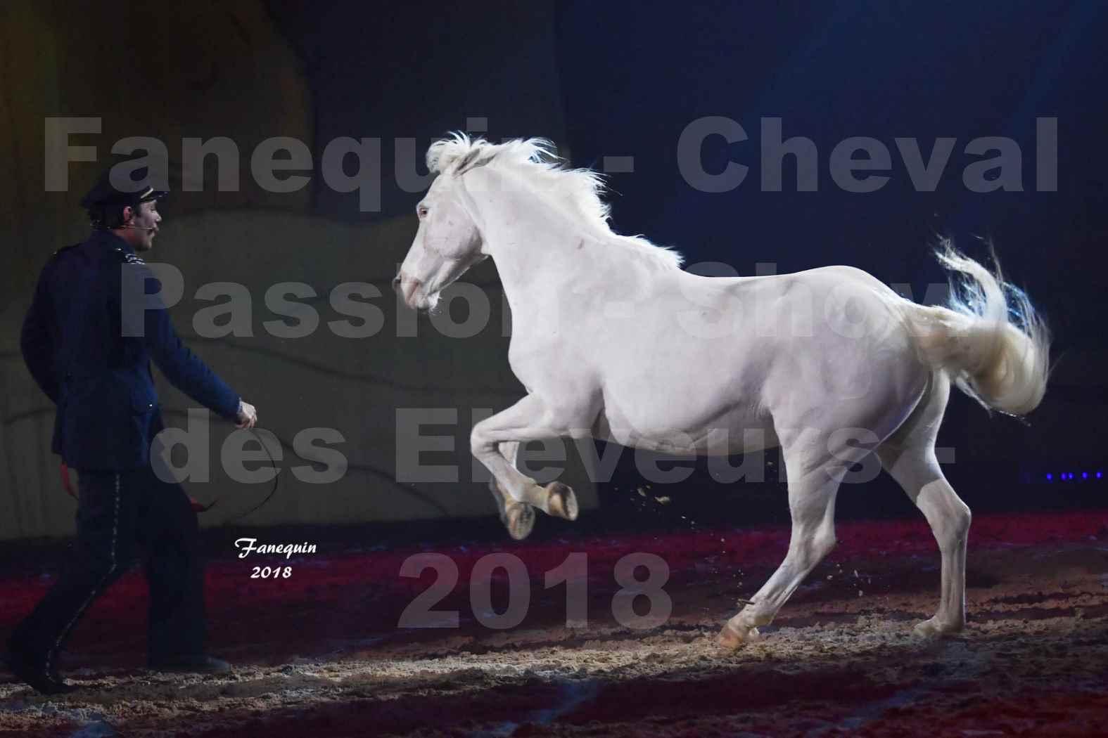 Cheval Passion 2018 - Spectacle les Crinières d'OR - Le FACTEUR 3 - 04