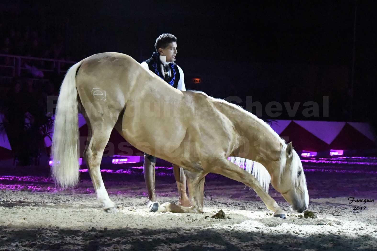 Cheval Passion 2017 - gala des Crinières d'OR - GARI ZOHER - 03