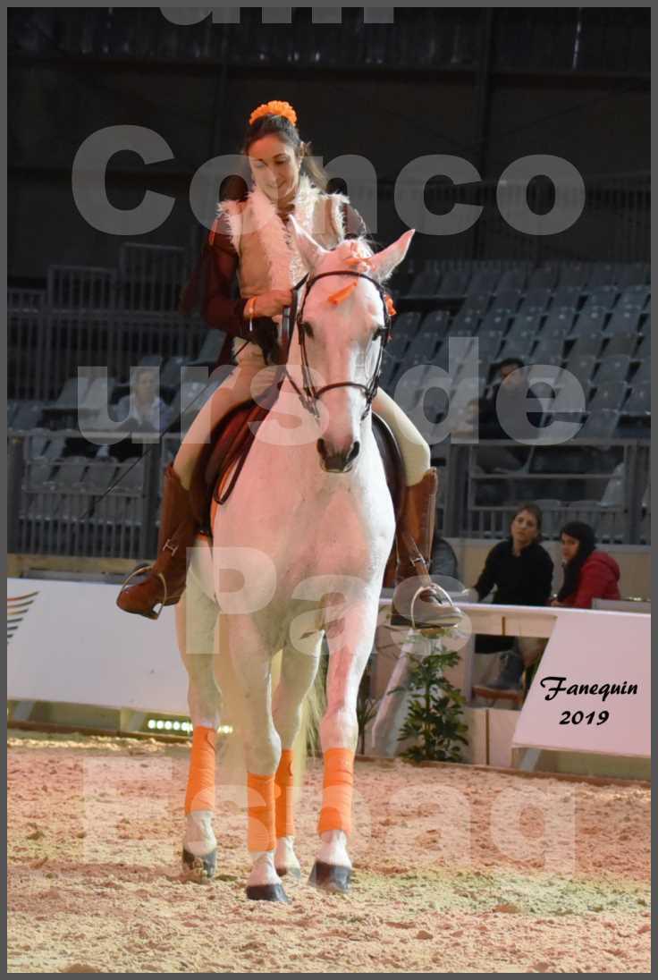 """Cheval Passion 2019 - Concours de Pas Espagnol - Étalon """"ZIDANE"""" - 22"""