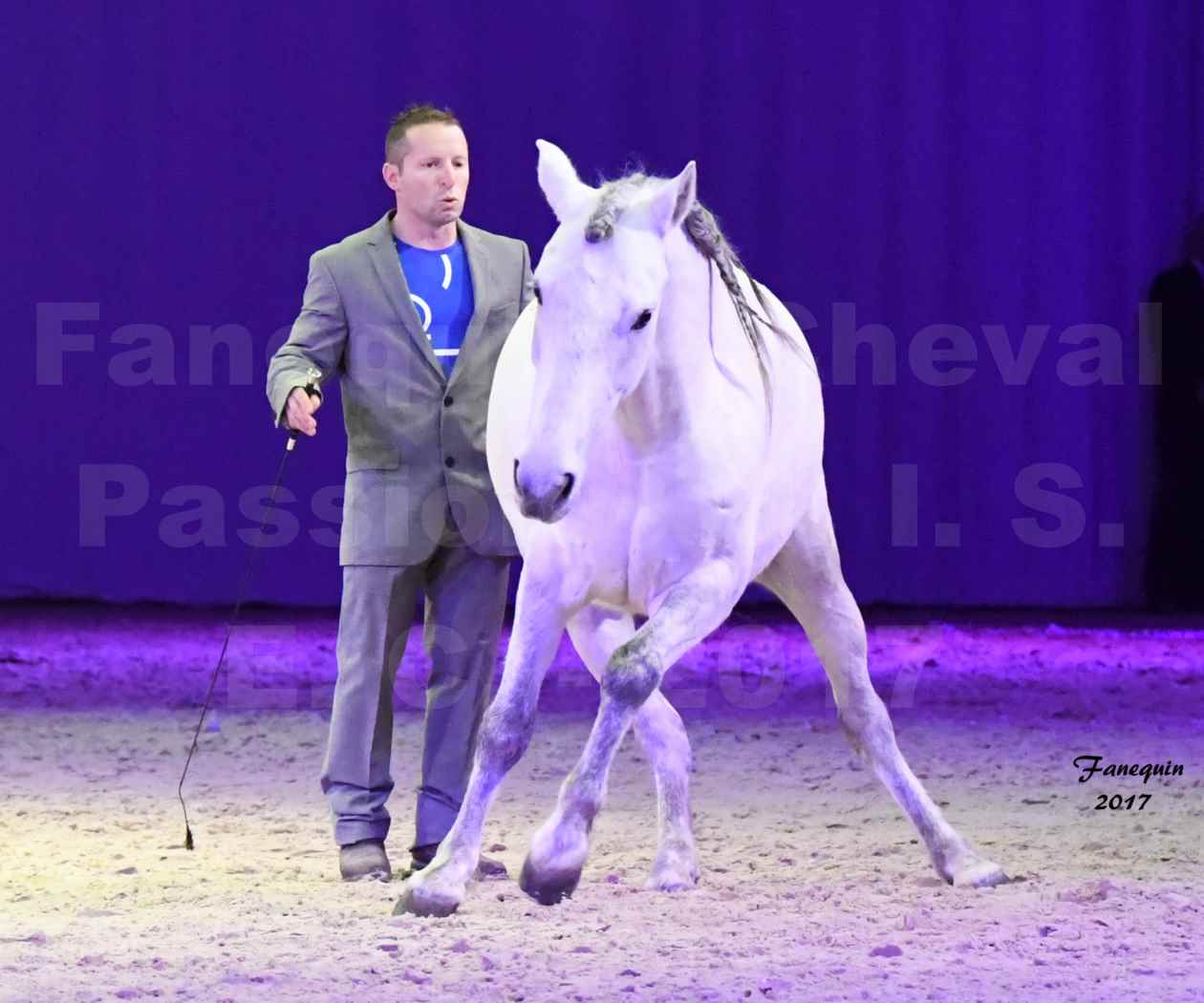 Cheval Passion 2017 - M. I. S. E. C. - Ludovic LONGO & 1 cheval en liberté - 09