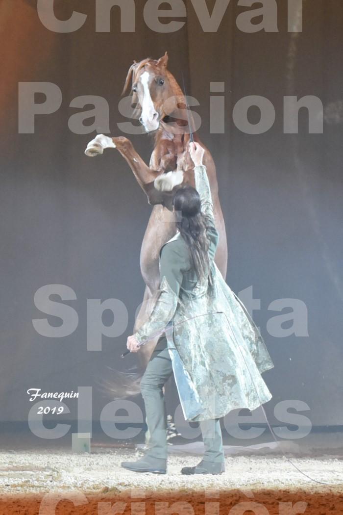 Cheval Passion 2019 - Spectacle des CRINIÈRES d'OR - Frédéric PIGNON & Cheval Alezan en liberté - 24
