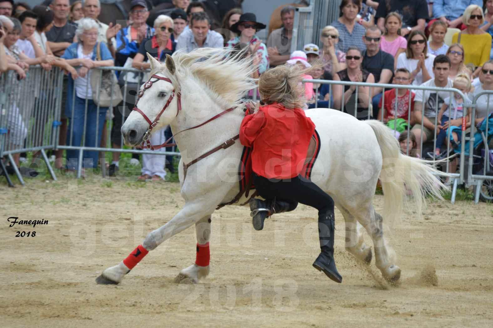 Spectacle Équestre le 3 juin 2018 à Saint Gély du Fesc - Voltige équestre - Troupe de Jean Antoine FIRMIN - 27