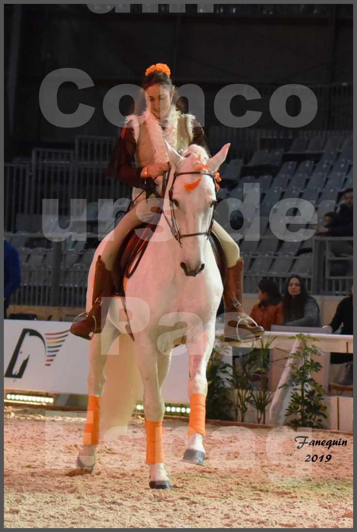 """Cheval Passion 2019 - Concours de Pas Espagnol - Étalon """"ZIDANE"""" - 20"""