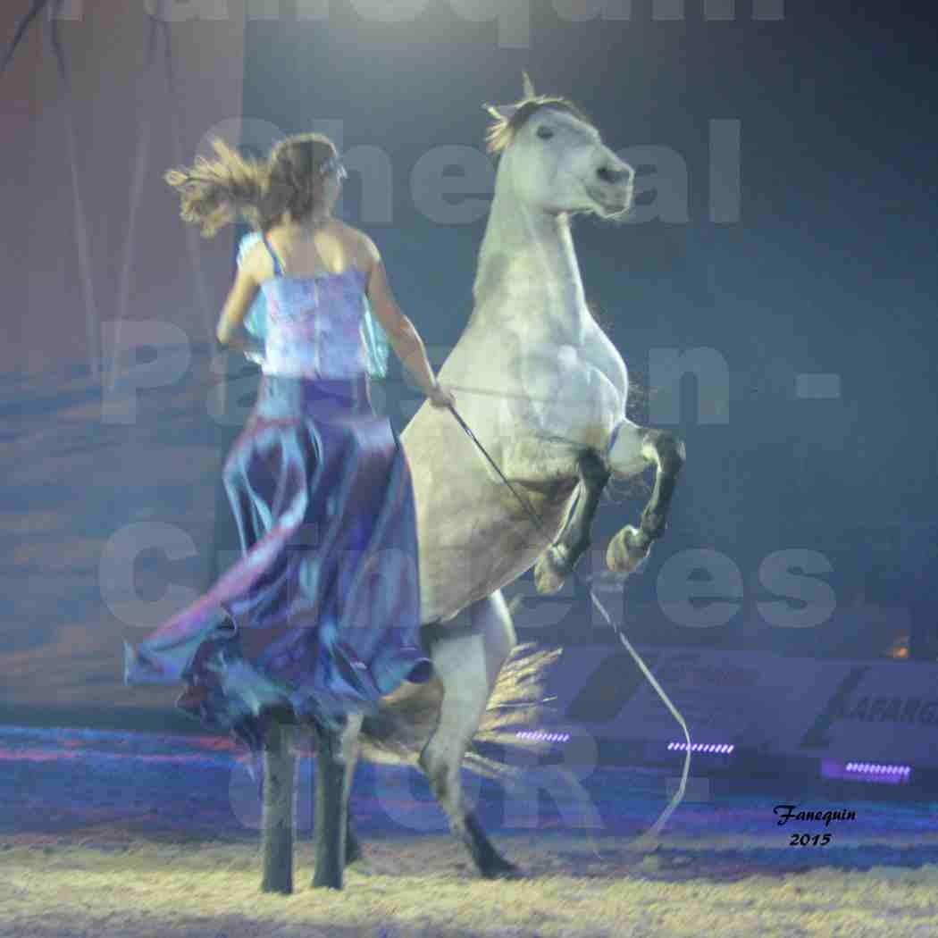Cheval Passion 2015 - Spectacle des Crinières d'OR - Lucie VAUTHIER & 2 chevaux en liberté - 09