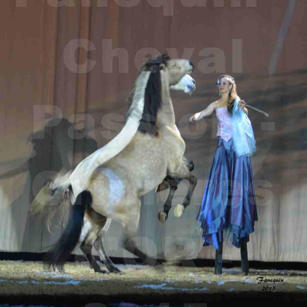 Cheval Passion 2015 - Spectacle des Crinières d'OR - Lucie VAUTHIER & 2 chevaux en liberté - 17