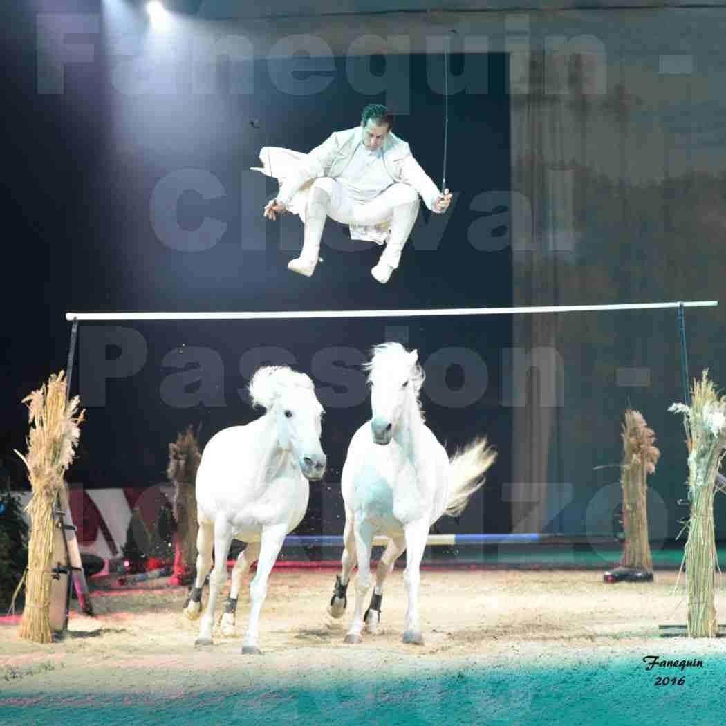 """Cheval Passion 2016 - Spectacle les Crinières d'OR - LORENZO """"Blanc"""" - représentation du 23 janvier 2016 - 04"""