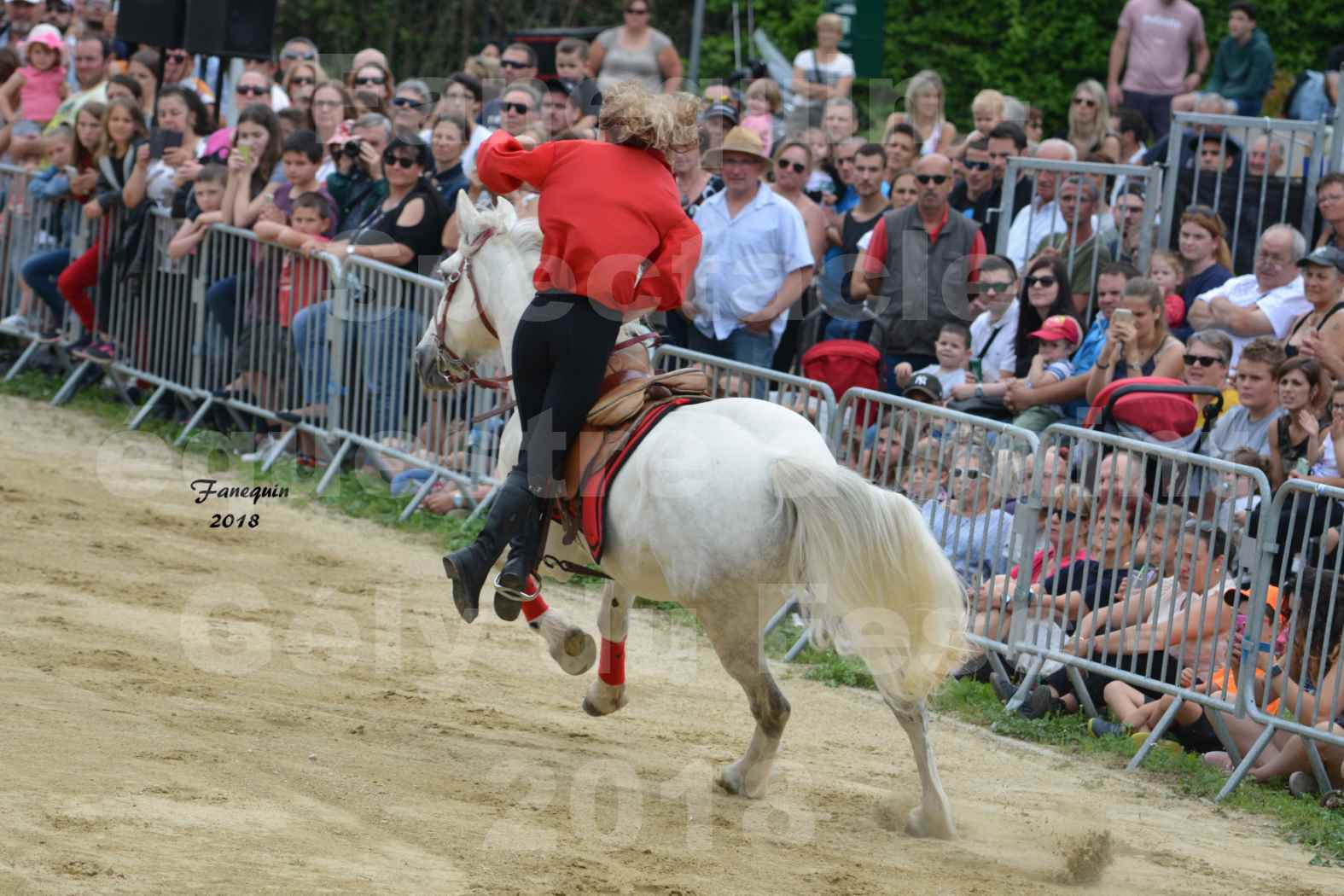 Spectacle Équestre le 3 juin 2018 à Saint Gély du Fesc - Voltige équestre - Troupe de Jean Antoine FIRMIN - 08
