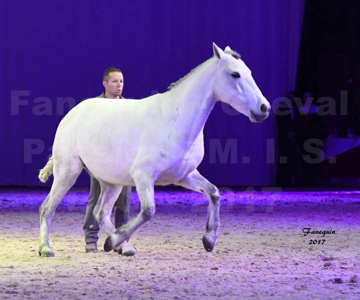 Cheval Passion 2017 - M. I. S. E. C. - Ludovic LONGO & 1 cheval en liberté - 02