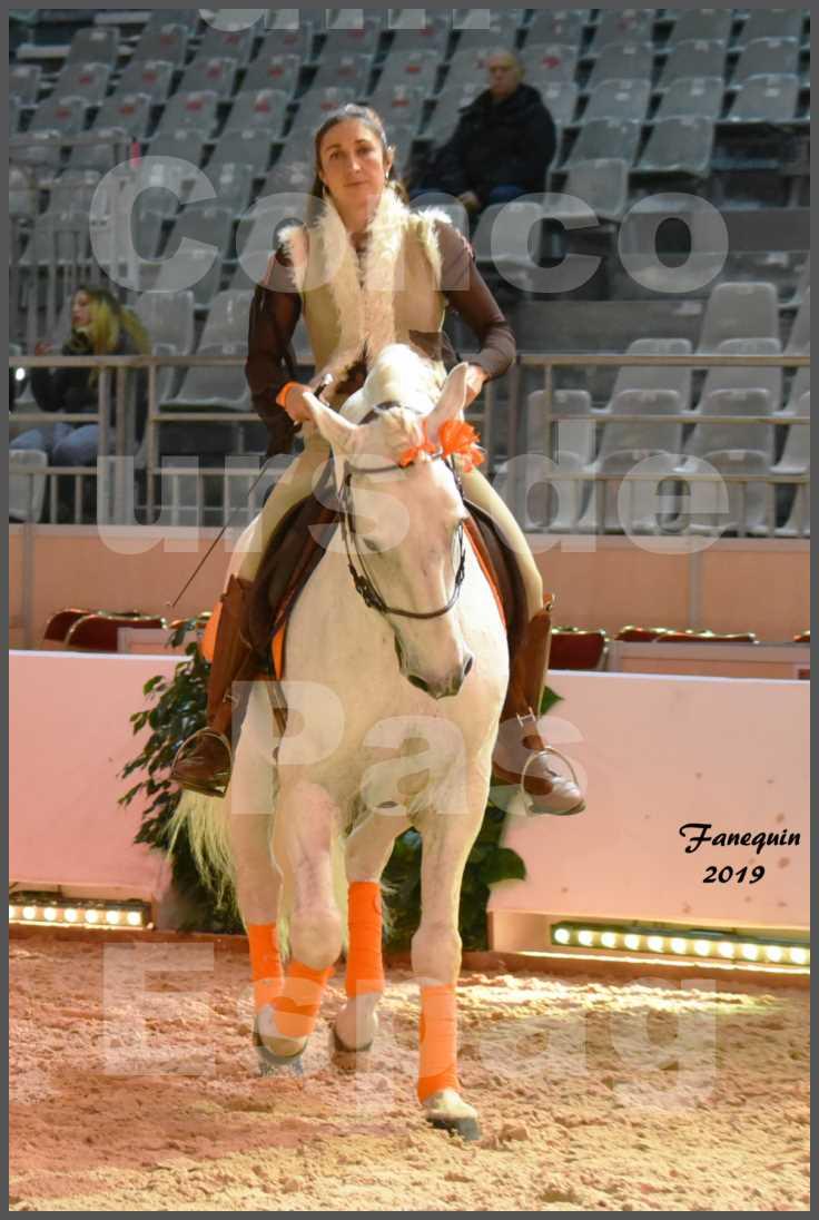 """Cheval Passion 2019 - Concours de Pas Espagnol - Étalon """"ZIDANE"""" - 08"""