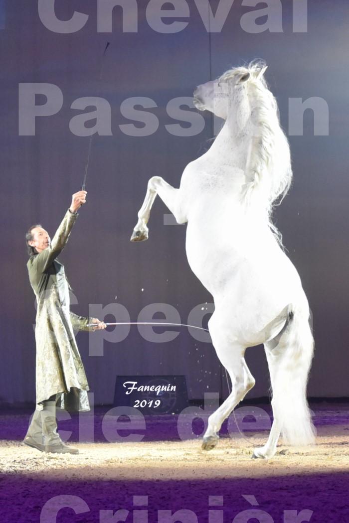 Cheval Passion 2019 - Spectacle des CRINIÈRES d'OR - Frédéric PIGNON & Cheval Gris en liberté - 33