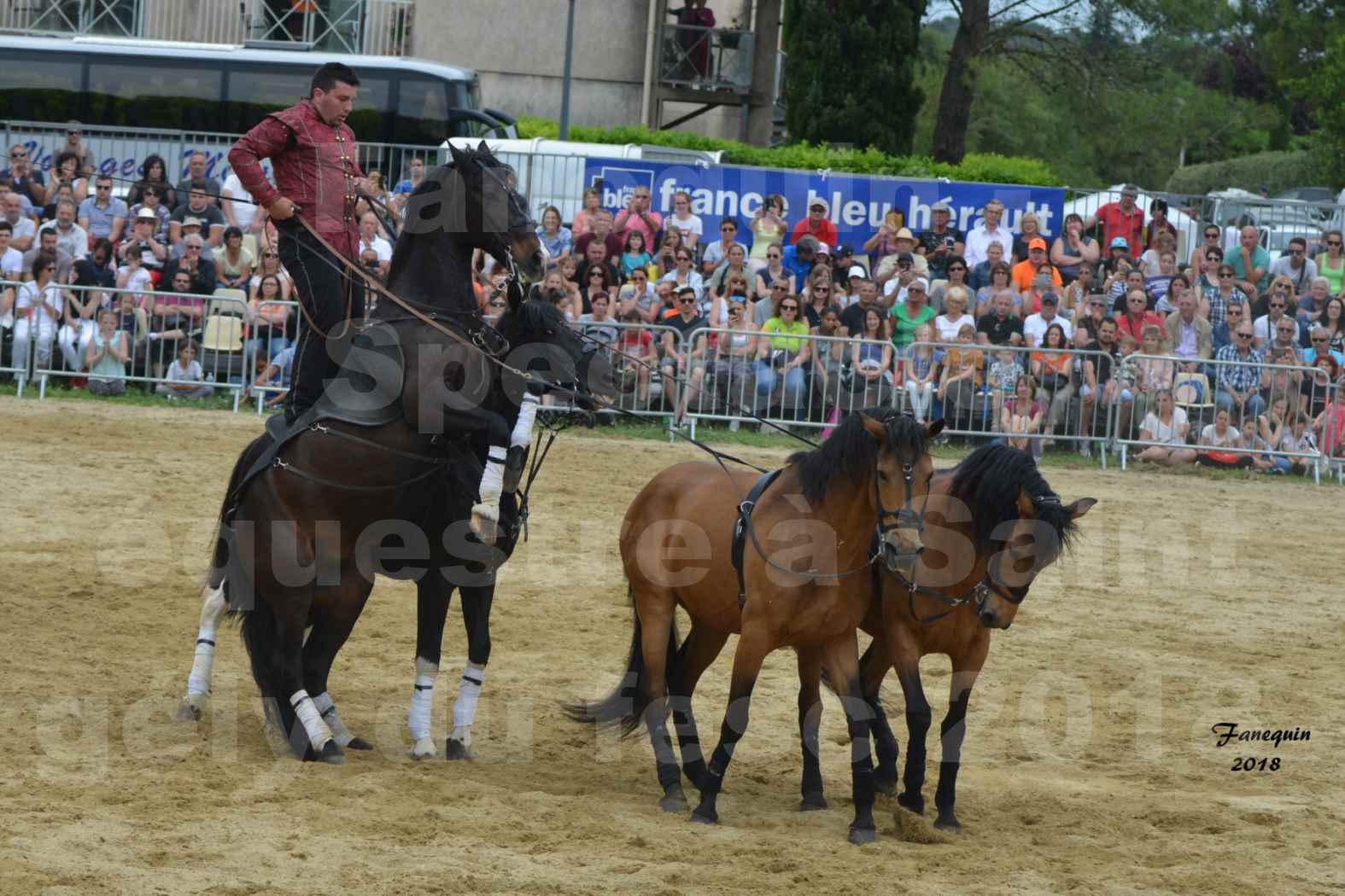 Spectacle Équestre le 3 juin 2018 à Saint Gély du Fesc - Poste Hongroise de 2 à 6 chevaux - Benoît SOUMILLE - 09