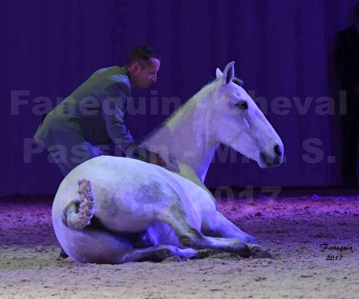 Cheval Passion 2017 - M. I. S. E. C. - Ludovic LONGO & 1 cheval en liberté - 18