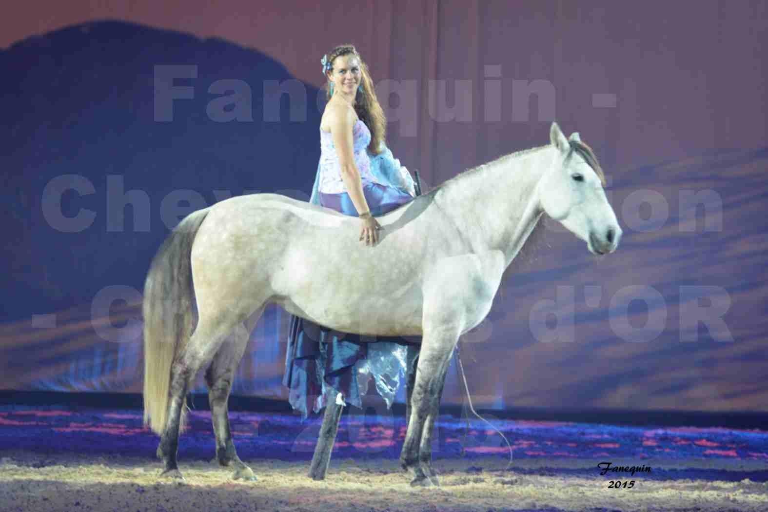 Cheval Passion 2015 - Spectacle des Crinières d'OR - Lucie VAUTHIER & 2 chevaux en liberté - 06