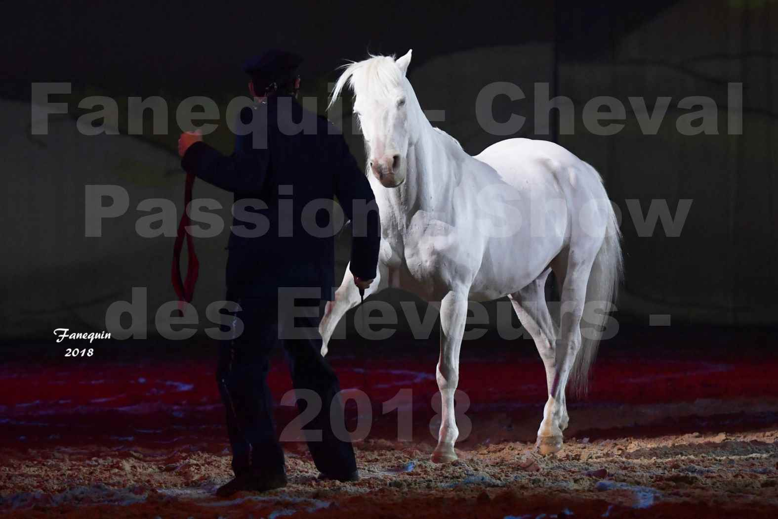 Cheval Passion 2018 - Spectacle les Crinières d'OR - Le FACTEUR 3 - 05