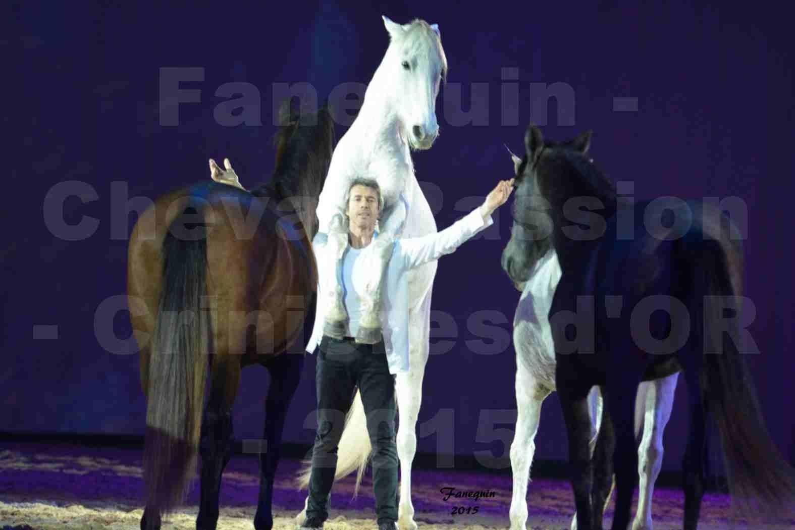 Cheval Passion 2015 - Les Crinières d'OR - Jean François PIGNON - 004