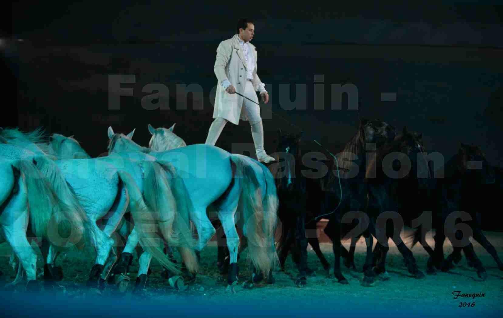 """Cheval Passion 2016 - Spectacle les Crinières d'OR - LORENZO """"Blanc"""" - représentation du 20 janvier 2016 - 22"""