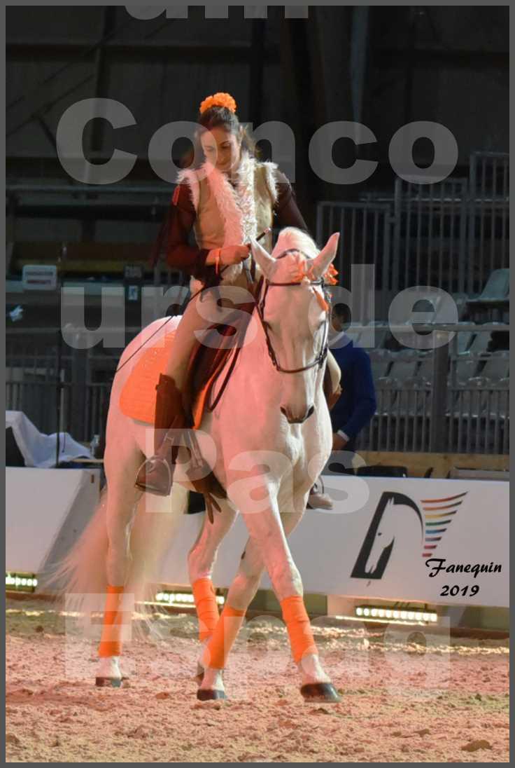 """Cheval Passion 2019 - Concours de Pas Espagnol - Étalon """"ZIDANE"""" - 15"""