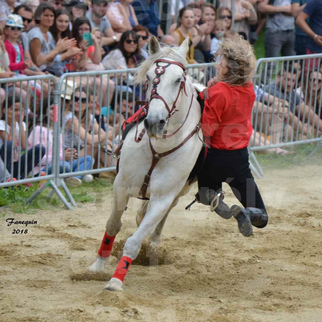 Spectacle Équestre le 3 juin 2018 à Saint Gély du Fesc - Voltige équestre - Troupe de Jean Antoine FIRMIN - 79