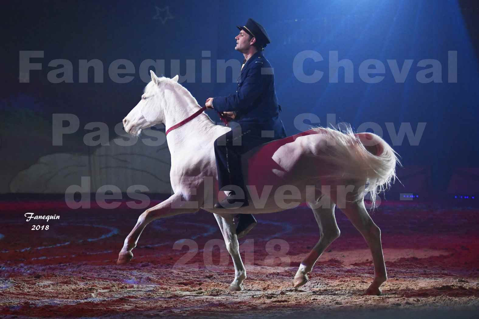 Cheval Passion 2018 - Spectacle les Crinières d'OR - Le FACTEUR 3 - 01